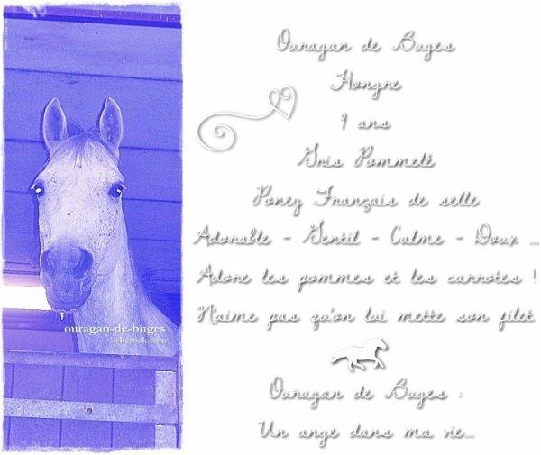 Ouragan de Buges - Mon Namoùur ♥ Pour la viie ♥