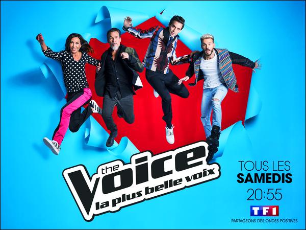 Découvrez l'affiche promotionnelle pour l'émission « The Voice 6 » avec Matt