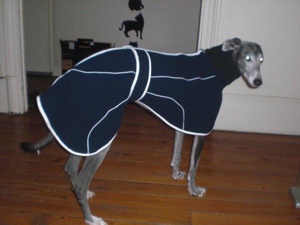 nouveau manteau (un peu grand lol)