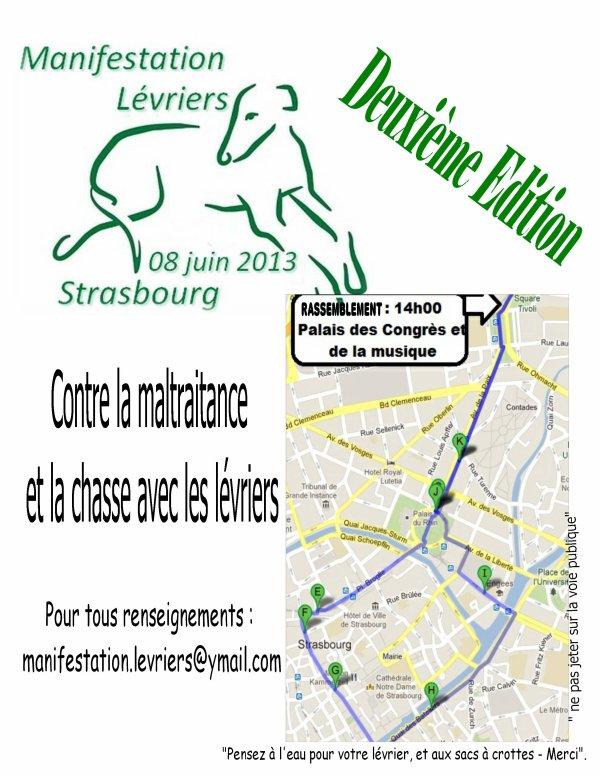 Manifestation en faveur des galgos samedi 8 juin à Strasbourg