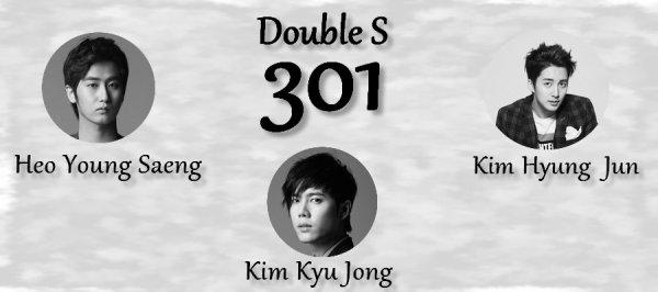 Double S 301
