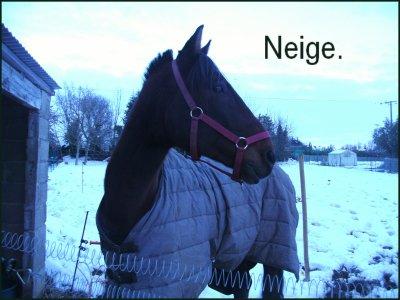 Neige.