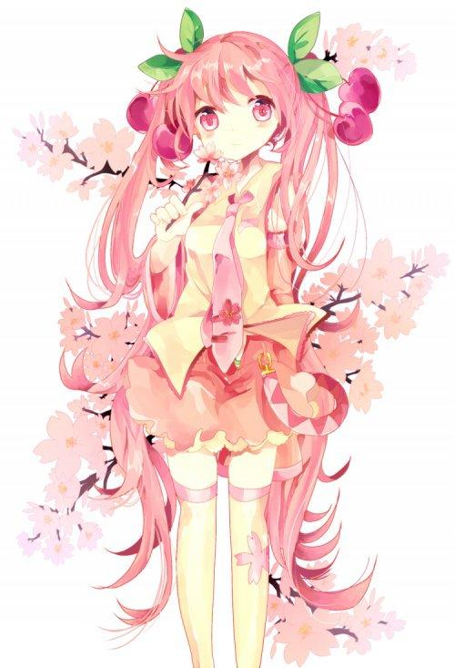 Miku Sakura