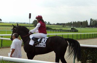 Présentation d'une Jockey Hors Norme