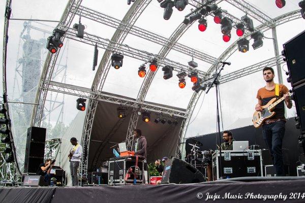 2.08.14 :  Ronquières Festival 2014 (Be) : Robbing Millions, Yellowstraps, Yodelice, Hollisiz