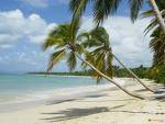 voyage au coeur des merveilleuses plages que nous offre la nature