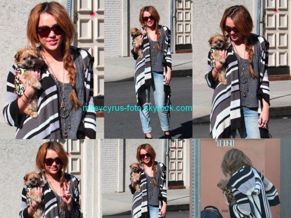Nouvelles photos de Miley Cyrus à Toluca Lake avec son nouveau chien.