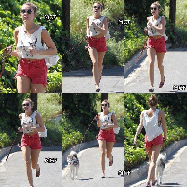 Miley a été aperçu hier à Los Angeles en train de faire courir son chien !!!