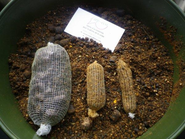 Filet soluble carpe pour sticks