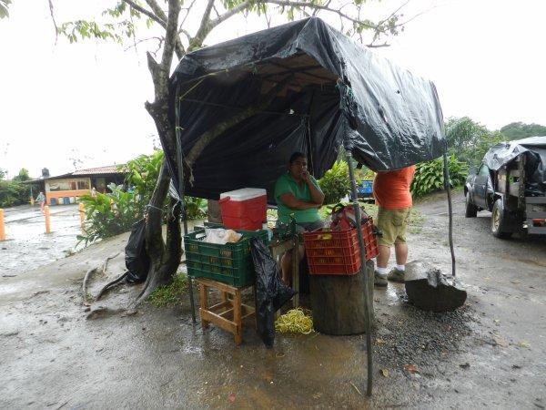 Quelques photos du Costa Rica