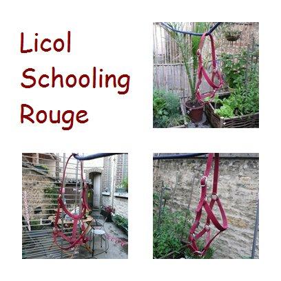 Licol + Longe Rouge