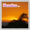 Meaadow