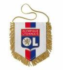 Photo de le-lyonnais-76490