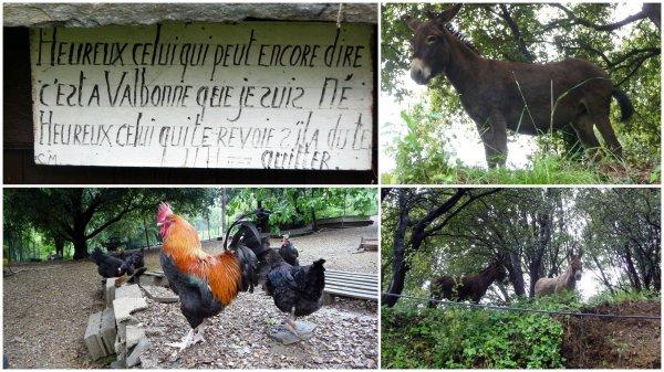 Col des Cabones, Valbonne, Col du Devninayre, ferme de Goutanière...12/05/207