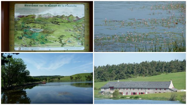 Cantal J3 - Le lac du Pêcher 15/06/2017