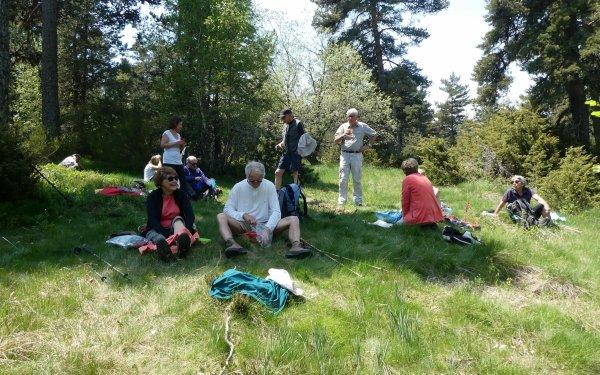 La Forêt du Patus 04/06/2019