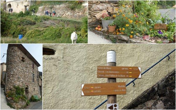 Saint Gervais sur Mare 09/10/2020