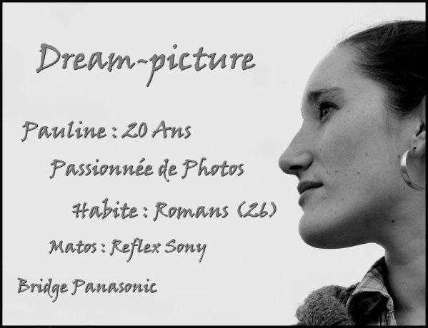"""Petite présentation """" Dream-picture26' """""""