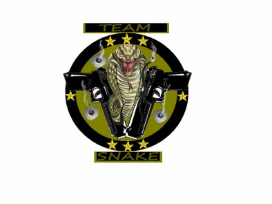 le logos de notre team