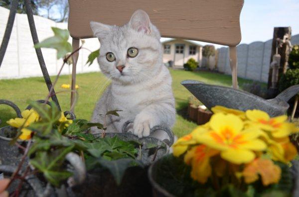 très belles photos reçues d'haribo à l'extérieur de chez sa maman cindy