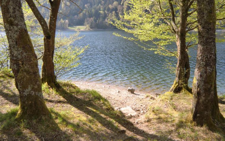 Lac de Kruth-Wildenstein, ouverture 2015...