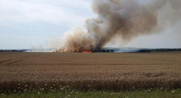 18 juillet 2014 feu de végétation sur pied