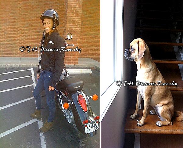 Et Jana qui abandonne son chien pour aller faire un tour avec sa moto ! (Idée du montage par la webmiss ne copie pas !)