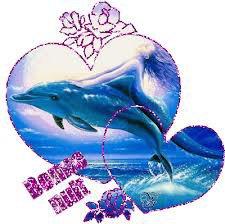 des dauphin