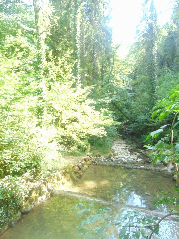 Promenade des Sources de l'Allondon