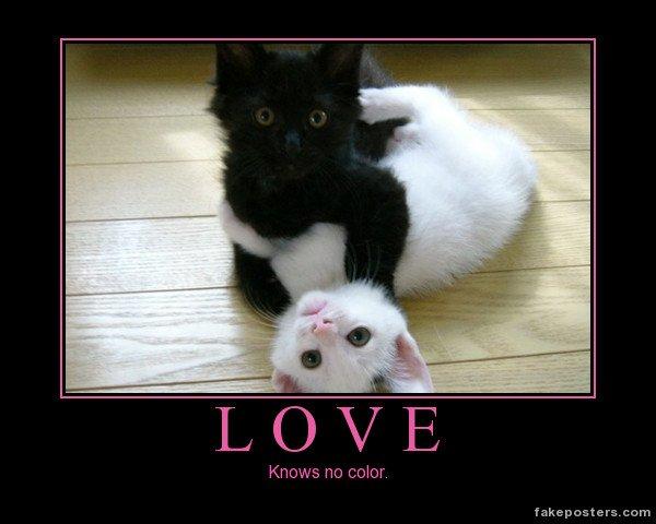 !!!   LOVE   !!!