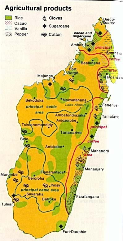 !!!   MADAGASCAR   !!!