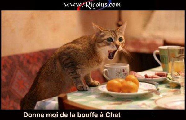 !!!   PETITE NOTE D'HUMOUR...   !!!