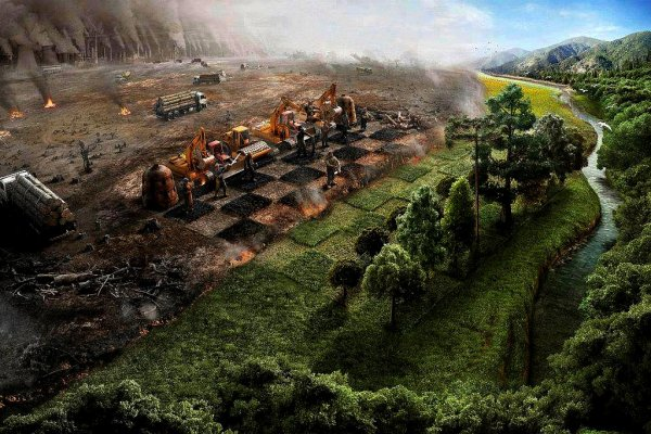 !!!   L'AMAZONIE  DU  FUTUR   !!!