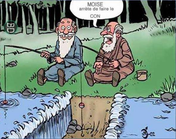!!!   ENTRE ILLUSIONS ET CONSOMMATION  !!!
