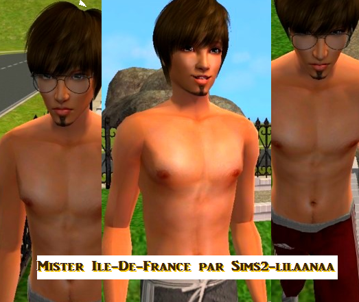 Mister Ile-De-France