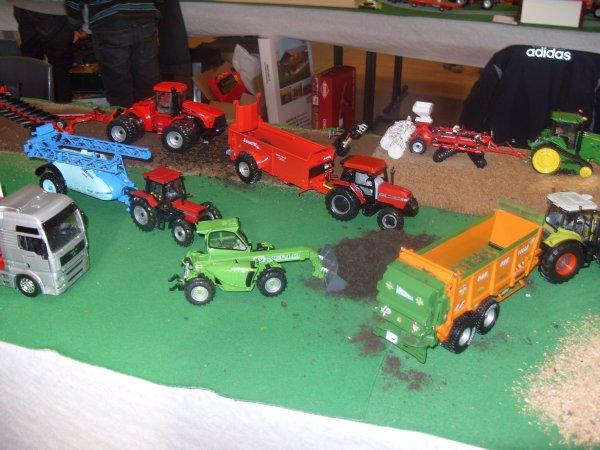 Mon diorama lors de l'expo à LAGRAVE dans le Tarn (81).