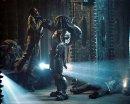 Photo de alien-predator-42