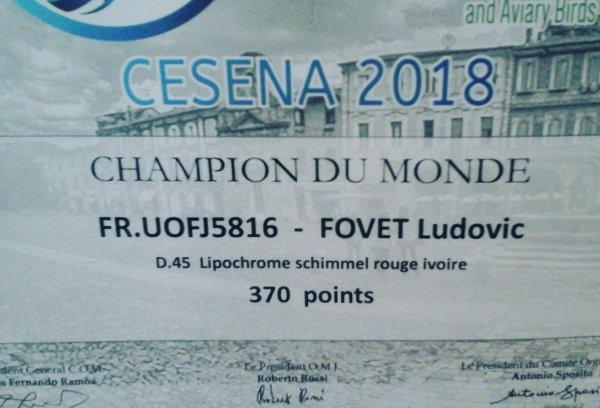 Championat du monde cesena 2018