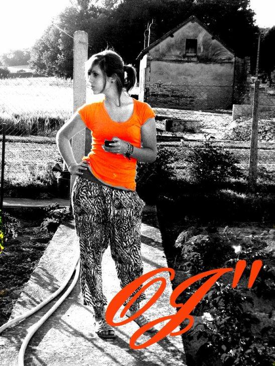 ~ Un Zett's d'Orange ~