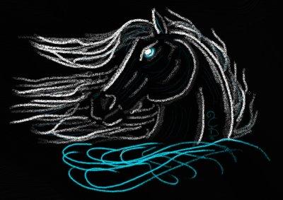 Tête de cheval ( sur fond noir )