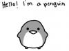 K-Penguin-O