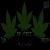"NEW PROJET ""3 Feuilles (EP)"" 5 Titres 9 Connexion (HDI MC/JonEs) & Big Smoke Dispo sur Haute Culture."