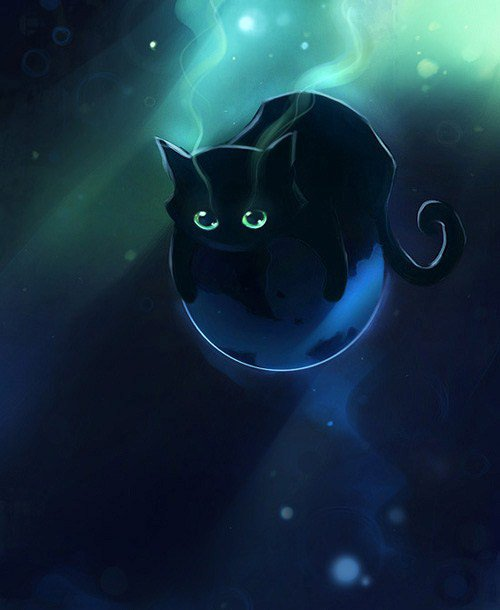 (l)chat trop tres joli =^w^=(l)