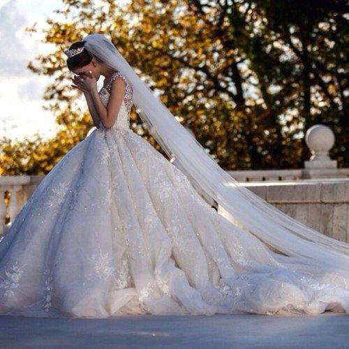 Chapitre XII (part 1) : Le mariage est une greffe : ça prend bien ou mal.