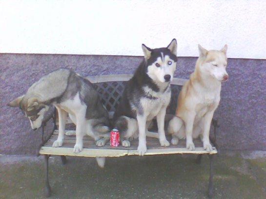 Brook&Nauq&Otchum<3