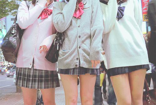 Welcome to Shisato Academy .