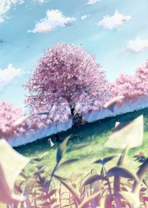 Natsume Yuujinchuu ♥ / Images Neutres x5
