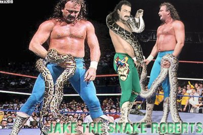 "Bio de Jake ""The Snake"" Roberts"
