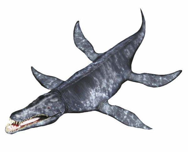 kronosaure