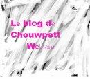 Photo de Chouwpett